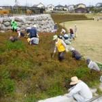 足門グラウンドゴルフのみなさんが除草作業を手伝ってくださいました。