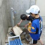 上の写真の続き。こちらはベースを水洗いしているところです。