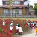 近隣保育園の園児が草むしりをして下さいました。