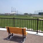 展望台からはレクリエーション広場から野球場まで見渡すことができます。